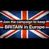 BRITAIN IN EUROPE FLAG 2015