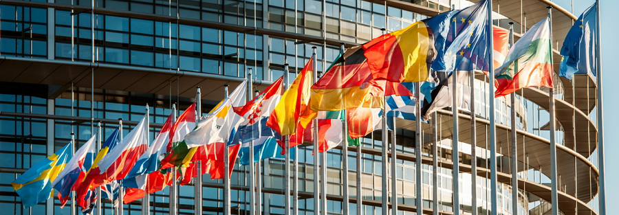 European Parliament external flags