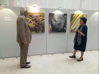 Exhibition (LibDemMEPs)